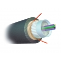AMP Fiber Optic Cable, Outside Plant, 4-Fiber, OM2, Armored Jacket
